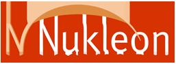 Nukleon Consumer Insights
